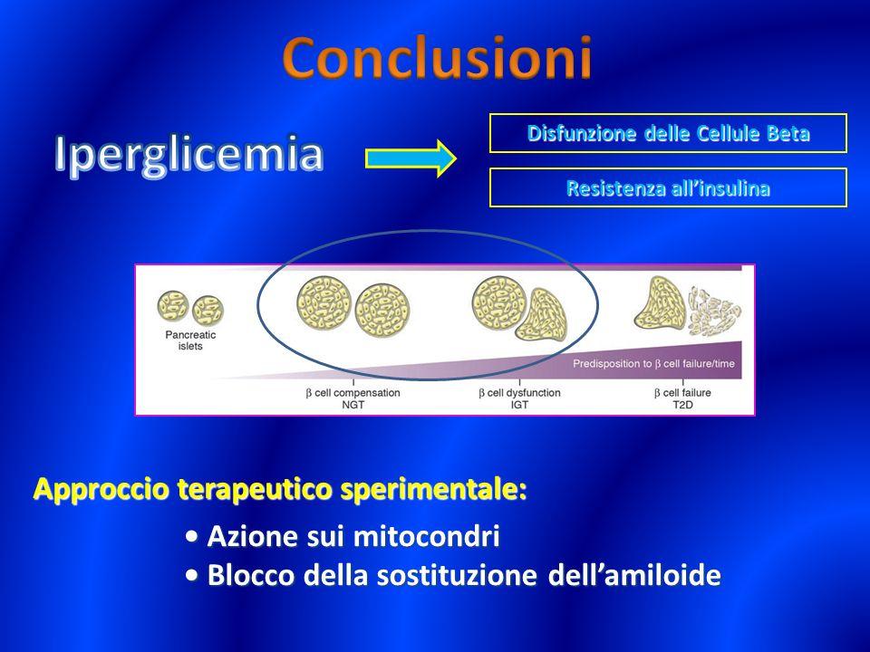 Disfunzione delle Cellule Beta Resistenza allinsulina Approccio terapeutico sperimentale: Azione sui mitocondri Azione sui mitocondri Blocco della sos