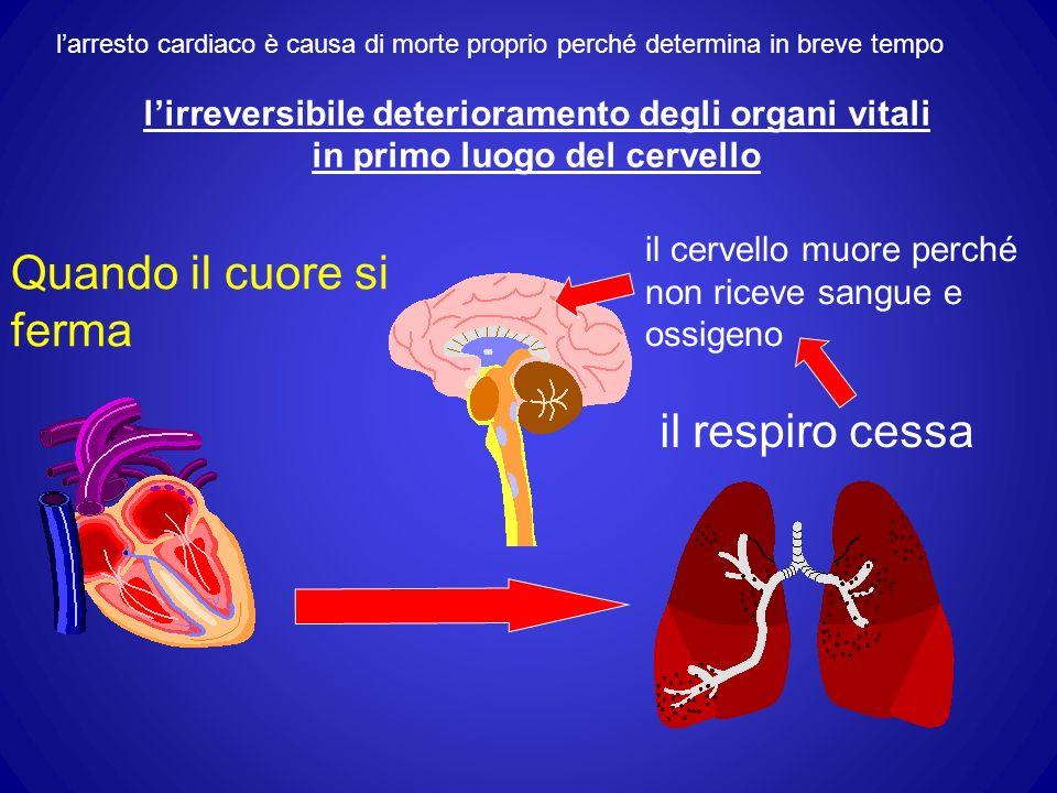 Quando il cuore si ferma il cervello muore perché non riceve sangue e ossigeno il respiro cessa larresto cardiaco è causa di morte proprio perché determina in breve tempo lirreversibile deterioramento degli organi vitali in primo luogo del cervello