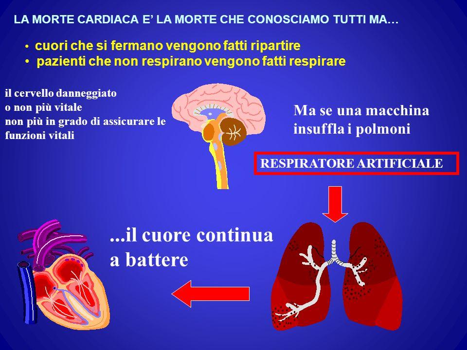 il cervello danneggiato o non più vitale non più in grado di assicurare le funzioni vitali Ma se una macchina insuffla i polmoni...il cuore continua a battere RESPIRATORE ARTIFICIALE LA MORTE CARDIACA E LA MORTE CHE CONOSCIAMO TUTTI MA… cuori che si fermano vengono fatti ripartire pazienti che non respirano vengono fatti respirare