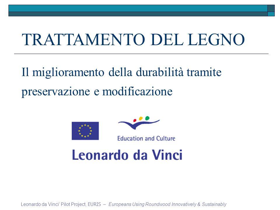 TRATTAMENTO DEL LEGNO Il miglioramento della durabilità tramite preservazione e modificazione Leonardo da Vinci Pilot Project, EURIS – Europeans Using