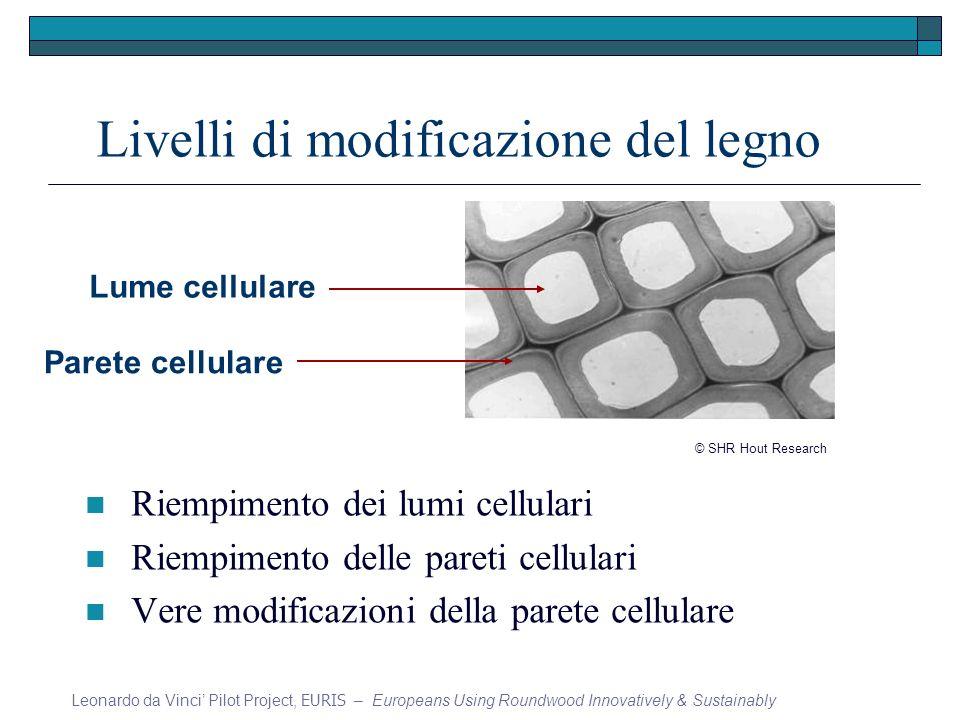 Livelli di modificazione del legno Riempimento dei lumi cellulari Riempimento delle pareti cellulari Vere modificazioni della parete cellulare Leonard
