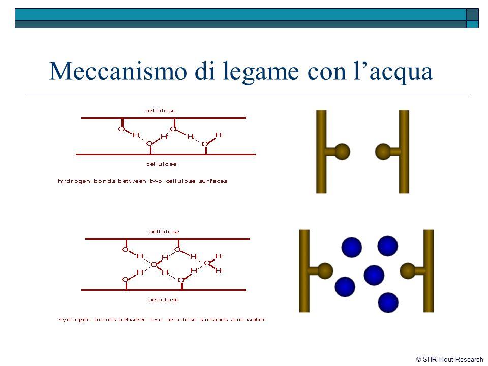 Meccanismo di legame con lacqua © SHR Hout Research