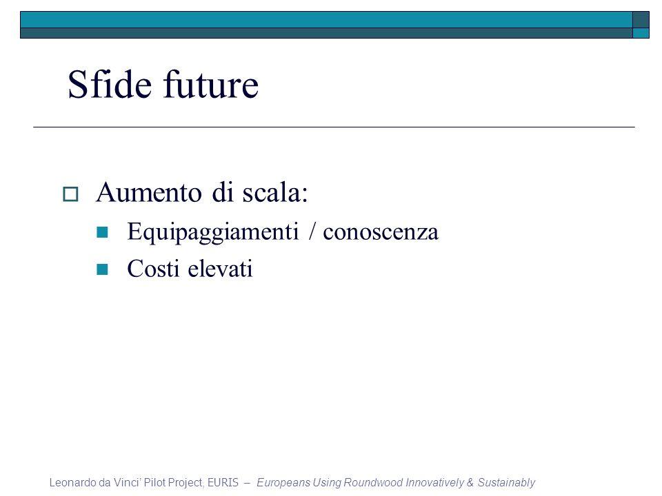 Sfide future Aumento di scala: Equipaggiamenti / conoscenza Costi elevati Leonardo da Vinci Pilot Project, EURIS – Europeans Using Roundwood Innovativ