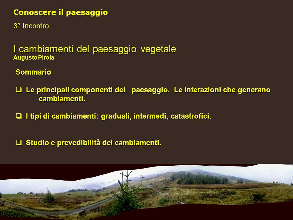 12 Riforestazione spontanea Processo: Arbusti isolati – macchie – alberi - bosco Conseguenze: Riduzione della biodiversità, minore praticabilità del territorio (gestione dei boschi).