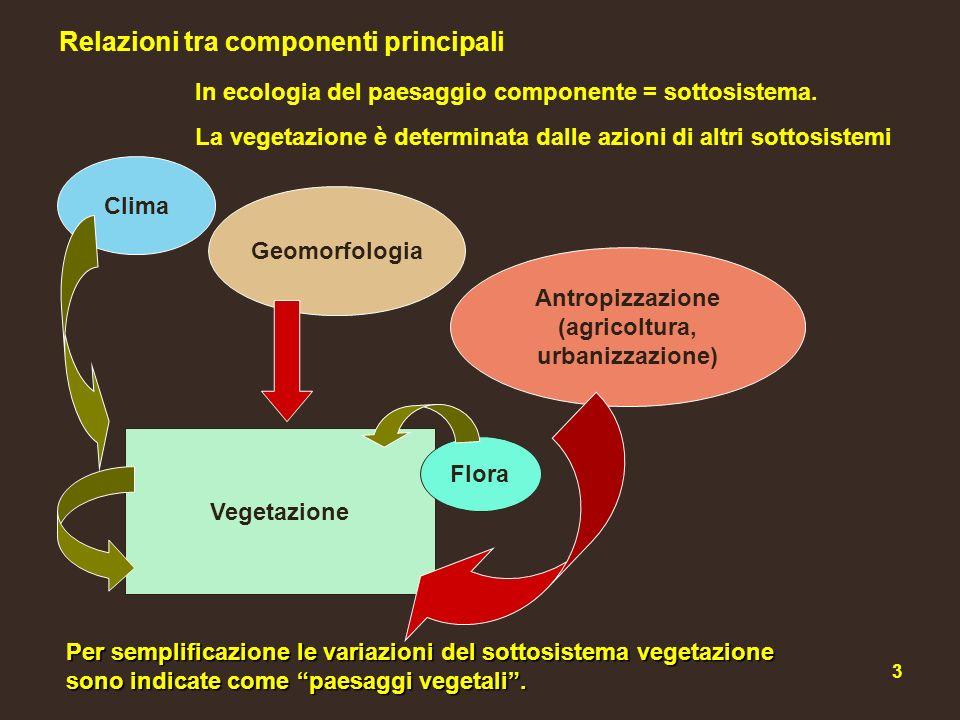4 Proprietà del sottosistema vegetazione In corrispondenza di fattori limitanti (naturali o antropici) le comunità vegetali assumono il valore di bioindicatori: la loro presenza indica lazione e lintensità di particolari fattori ambientali.