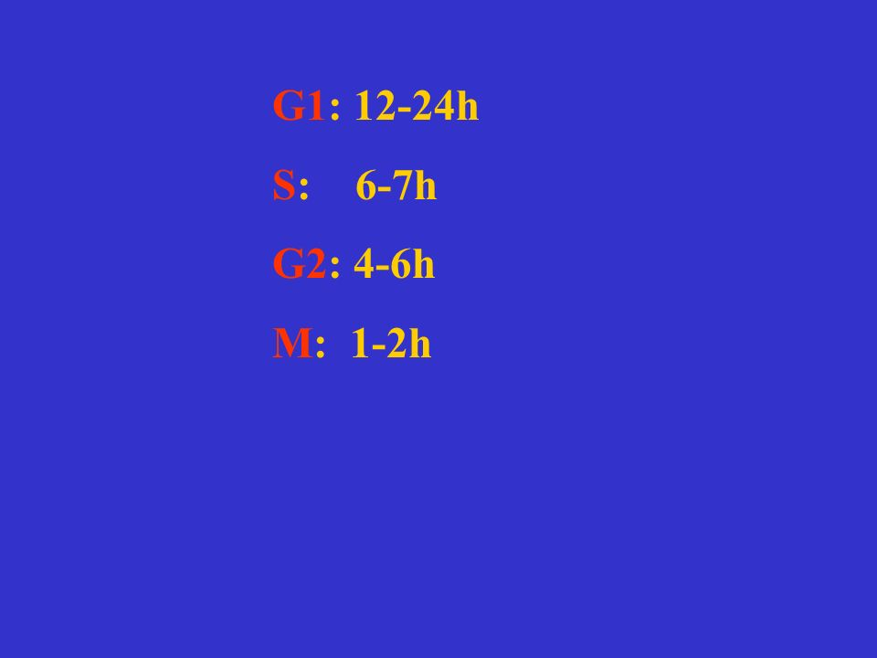 I diversi segnali (dimensione cellulare etc……) segnalano alla cellula che è arrivato il momento di dividersi.