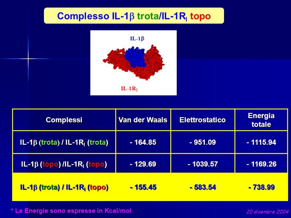 Complesso IL-1 trota/IL-1R I topo * Le Energie sono espresse in Kcal/mol Complessi Van der Waals Elettrostatico Energia totale IL-1 ( trota ) / IL-1R