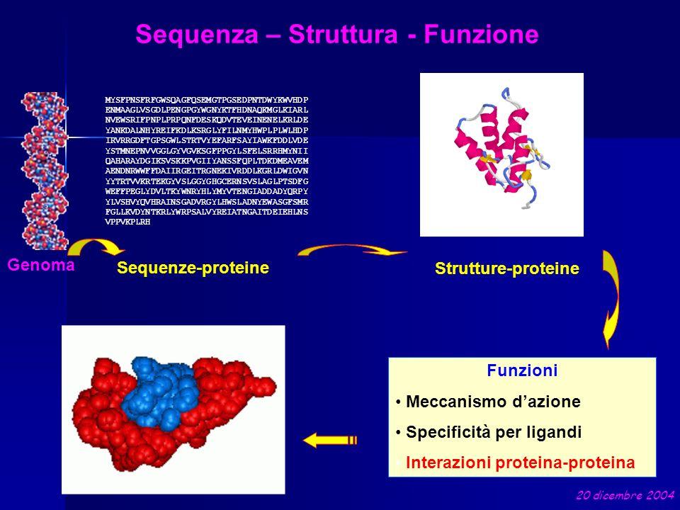 Struttura tridimensionale delle proteine Metodi Sperimentali Diffrazione ai Raggi X (RX) Risonanza Magnetica Nucleare (NMR) Metodi Computazionali Riconoscimento di fold Folding ab-initio Modellamento Comparativo 20 dicembre 2004