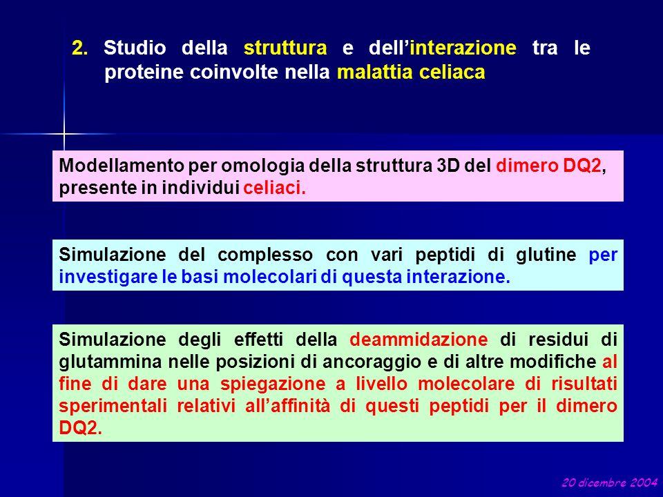 2. Studio della struttura e dellinterazione tra le proteine coinvolte nella malattia celiaca Modellamento per omologia della struttura 3D del dimero D