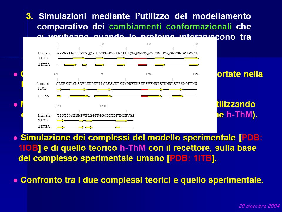 Confronto tra le due strutture umane di IL-1 riportate nella banca dati PDB. Modello teorico umano ottenuto per omologia utilizzando entrambe le strut