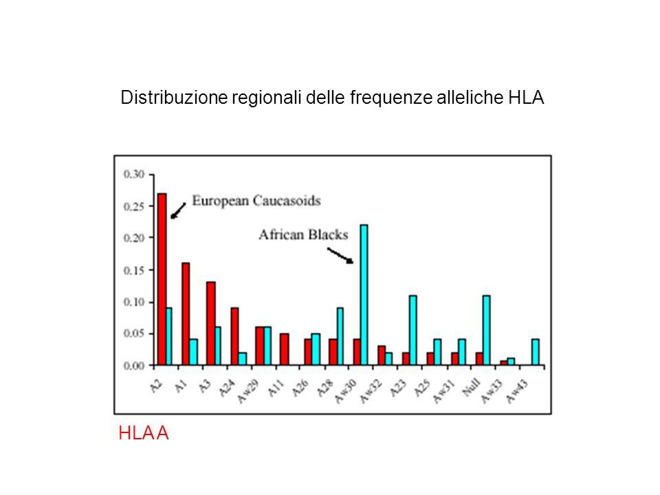 Distribuzione regionali delle frequenze alleliche HLA HLA A