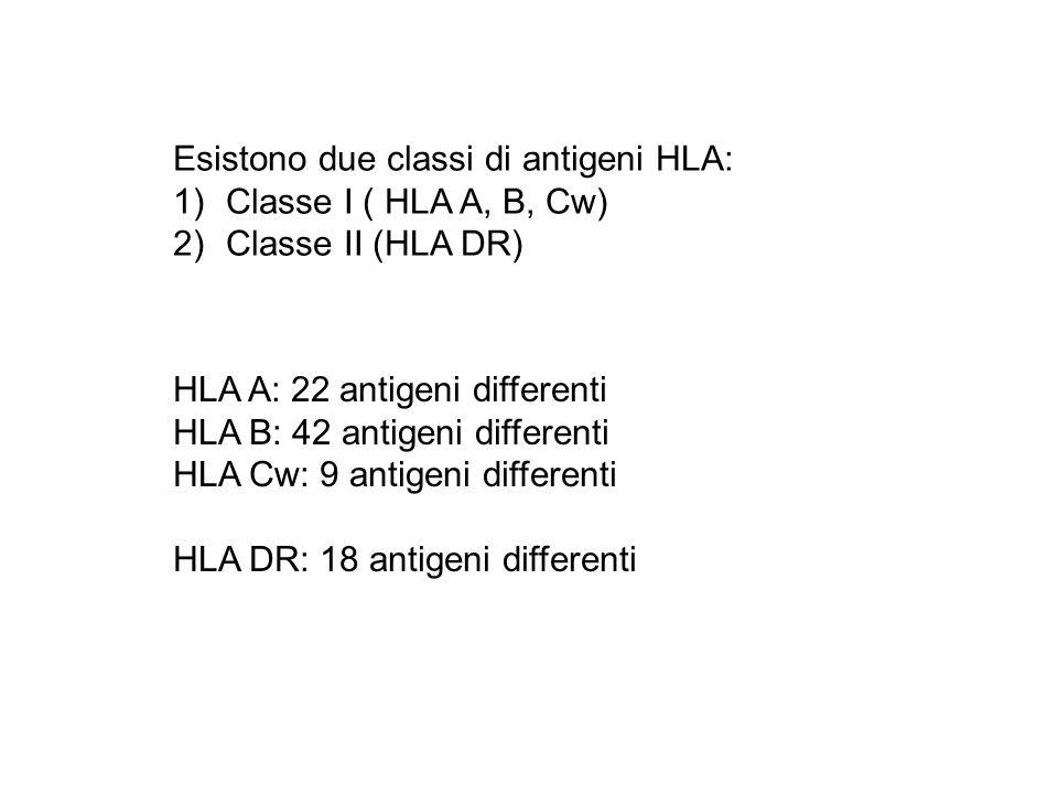 Esistono due classi di antigeni HLA: 1)Classe I ( HLA A, B, Cw) 2)Classe II (HLA DR) HLA A: 22 antigeni differenti HLA B: 42 antigeni differenti HLA C