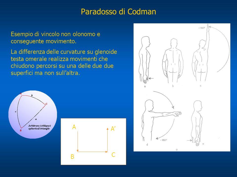 Paradosso di Codman Esempio di vincolo non olonomo e conseguente movimento. La differenza delle curvature su glenoide testa omerale realizza movimenti