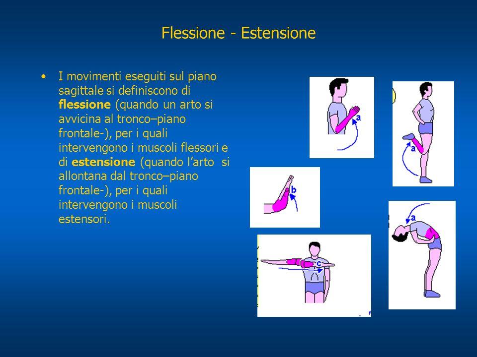 Flessione - Estensione I movimenti eseguiti sul piano sagittale si definiscono di flessione (quando un arto si avvicina al tronco–piano frontale-), pe