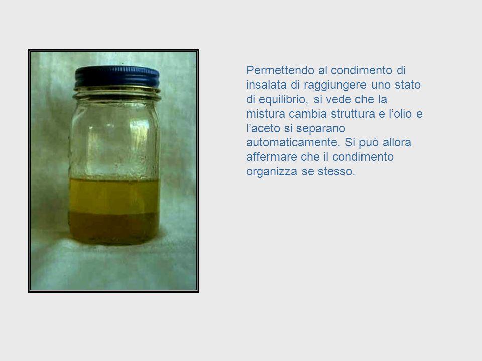 Anche il condimento di uninsalata costituito da olio ed aceto è un sistema auto-organizzativo. Infatti, se agitata, come qui illustrato, la mistura di