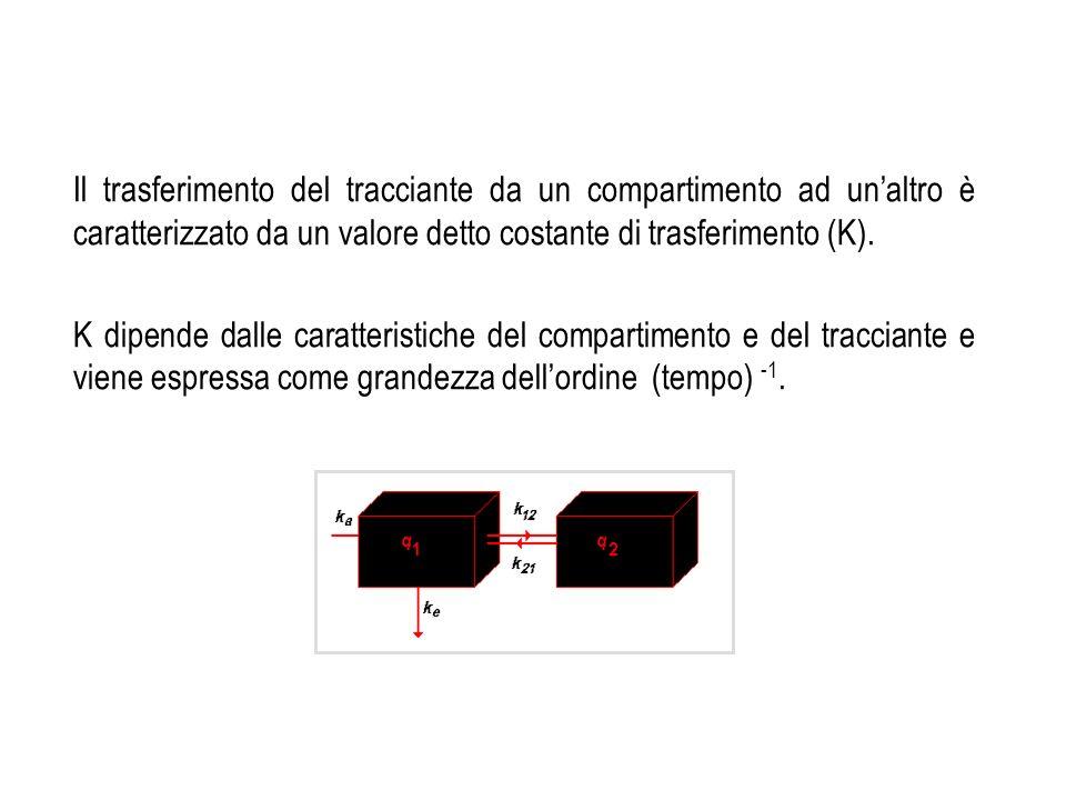 Il trasferimento del tracciante da un compartimento ad unaltro è caratterizzato da un valore detto costante di trasferimento (K). K dipende dalle cara