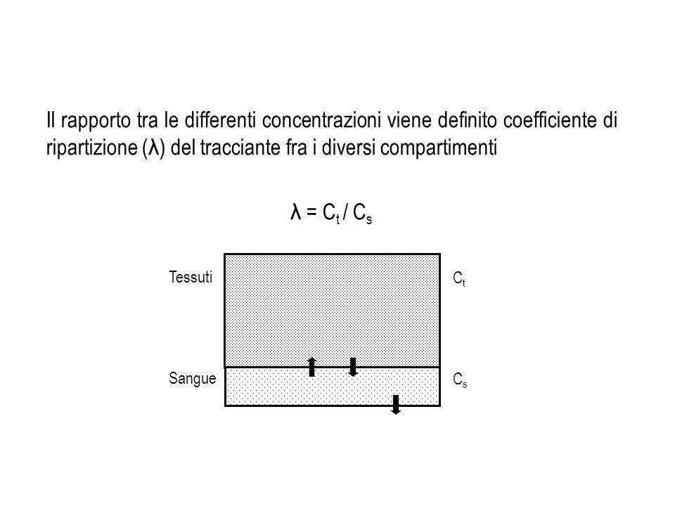 Il rapporto tra le differenti concentrazioni viene definito coefficiente di ripartizione ( λ ) del tracciante fra i diversi compartimenti λ = C t / C