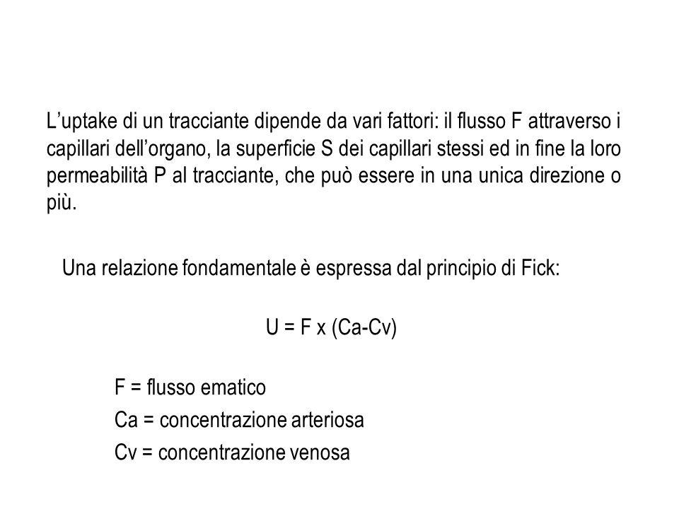 Luptake di un tracciante dipende da vari fattori: il flusso F attraverso i capillari dellorgano, la superficie S dei capillari stessi ed in fine la lo