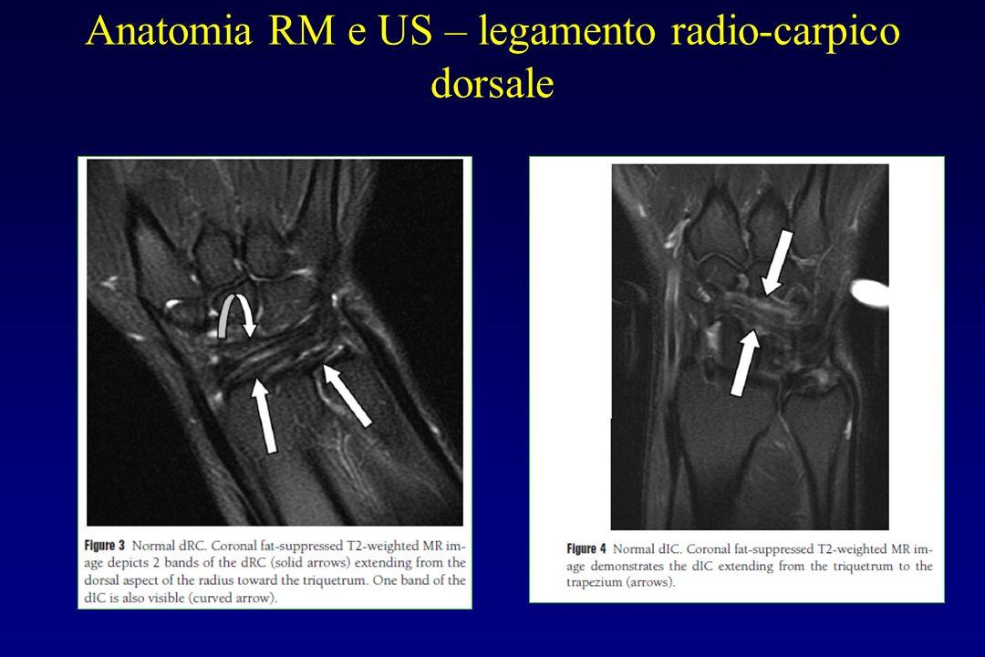 Anatomia RM e US – legamento radio-carpico dorsale