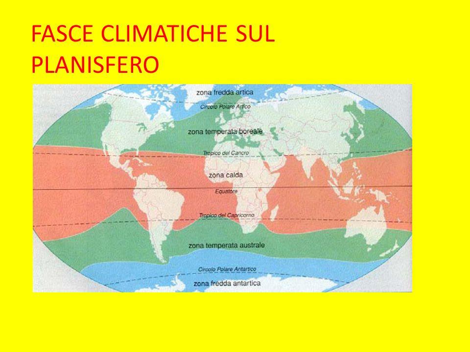 QUALI SONO LE FASCE CLIMATICHE DELLA TERRA.QUALI AMBIENTI NATURALI VI TROVIAMO.