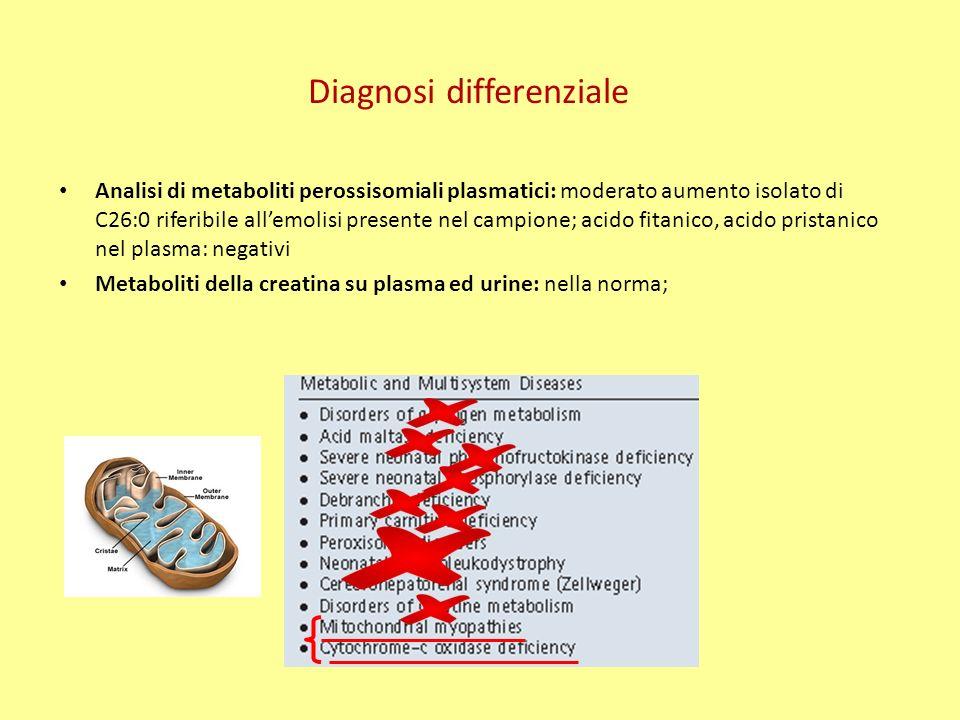 Analisi di metaboliti perossisomiali plasmatici: moderato aumento isolato di C26:0 riferibile allemolisi presente nel campione; acido fitanico, acido pristanico nel plasma: negativi Metaboliti della creatina su plasma ed urine: nella norma; Diagnosi differenziale