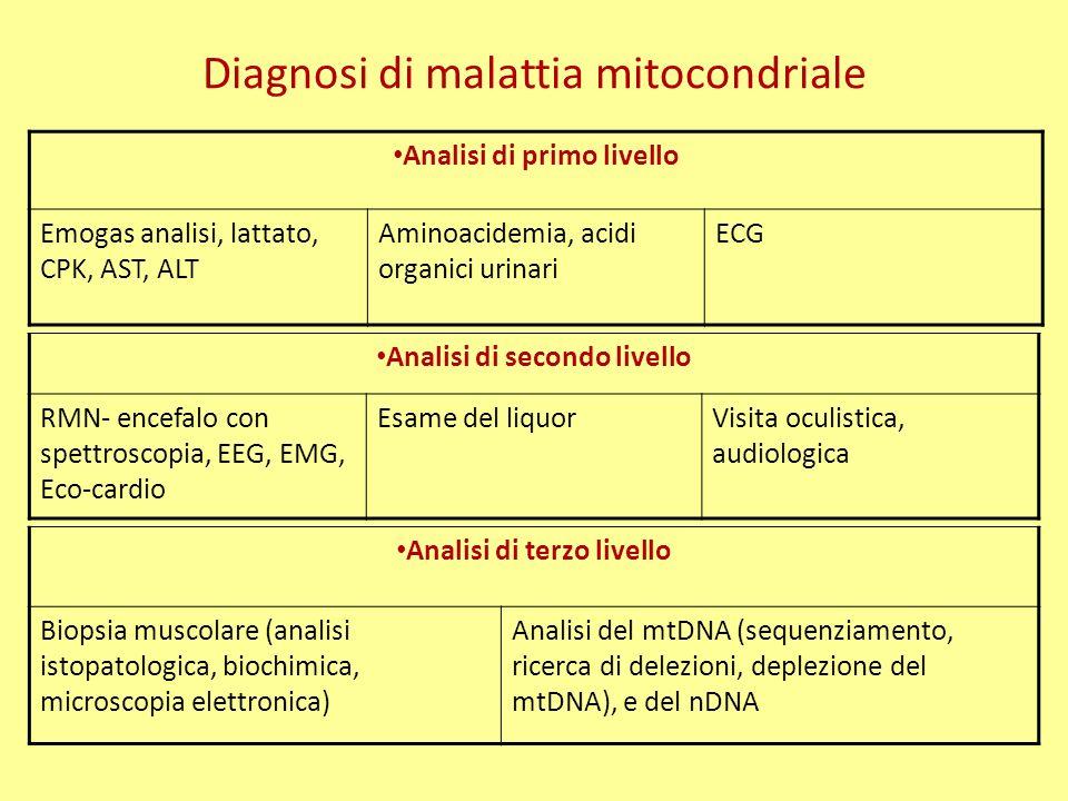 Diagnosi di malattia mitocondriale Analisi di primo livello Emogas analisi, lattato, CPK, AST, ALT Aminoacidemia, acidi organici urinari ECG Analisi di terzo livello Biopsia muscolare (analisi istopatologica, biochimica, microscopia elettronica) Analisi del mtDNA (sequenziamento, ricerca di delezioni, deplezione del mtDNA), e del nDNA Analisi di secondo livello RMN- encefalo con spettroscopia, EEG, EMG, Eco-cardio Esame del liquorVisita oculistica, audiologica