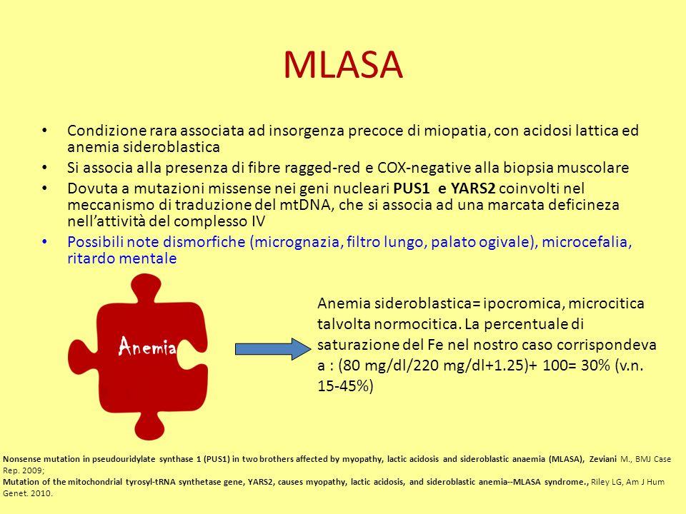 MLASA Condizione rara associata ad insorgenza precoce di miopatia, con acidosi lattica ed anemia sideroblastica Si associa alla presenza di fibre ragged-red e COX-negative alla biopsia muscolare Dovuta a mutazioni missense nei geni nucleari PUS1 e YARS2 coinvolti nel meccanismo di traduzione del mtDNA, che si associa ad una marcata deficineza nellattività del complesso IV Possibili note dismorfiche (micrognazia, filtro lungo, palato ogivale), microcefalia, ritardo mentale Nonsense mutation in pseudouridylate synthase 1 (PUS1) in two brothers affected by myopathy, lactic acidosis and sideroblastic anaemia (MLASA), Zeviani M., BMJ Case Rep.
