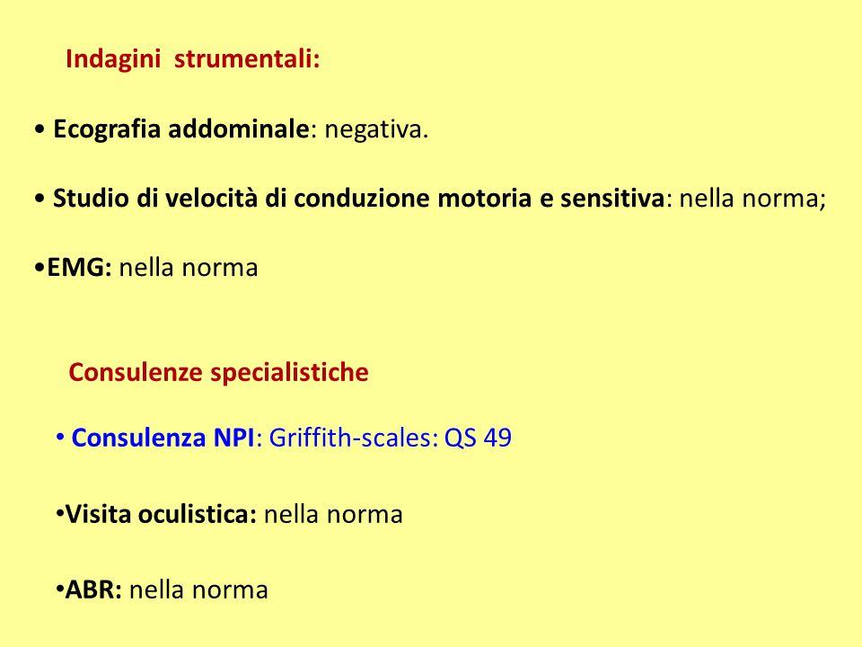 Consulenze specialistiche Consulenza NPI: Griffith-scales: QS 49 Visita oculistica: nella norma ABR: nella norma Ecografia addominale: negativa.