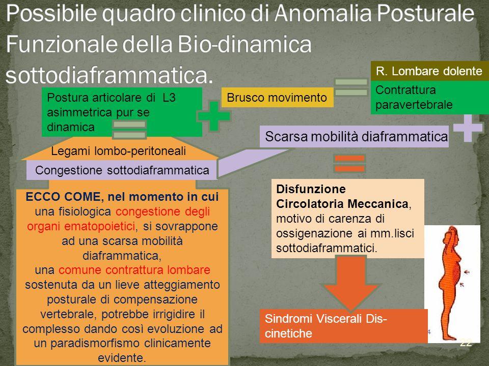 ECCO COME, nel momento in cui una fisiologica congestione degli organi ematopoietici, si sovrappone ad una scarsa mobilità diaframmatica, una comune c