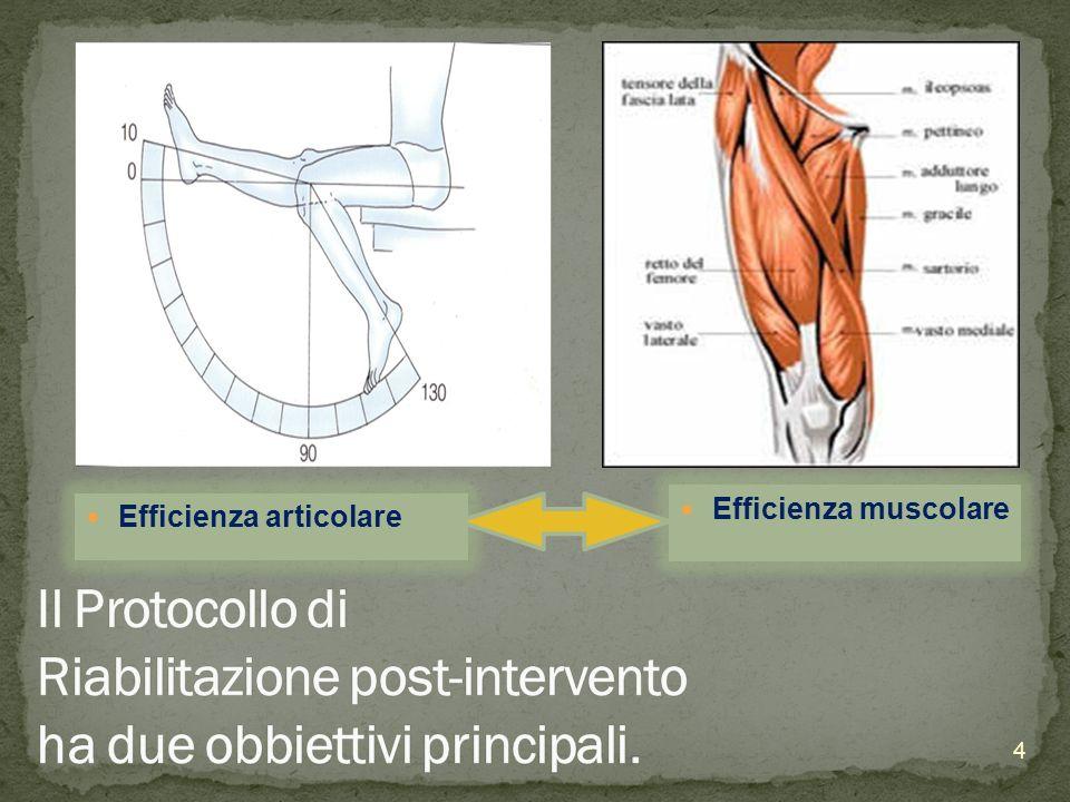 Efficienza articolare Efficienza muscolare 4