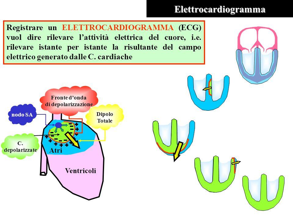 Elettrocardiogramma Registrare un ELETTROCARDIOGRAMMA (ECG) vuol dire rilevare lattività elettrica del cuore, i.e. rilevare istante per istante la ris