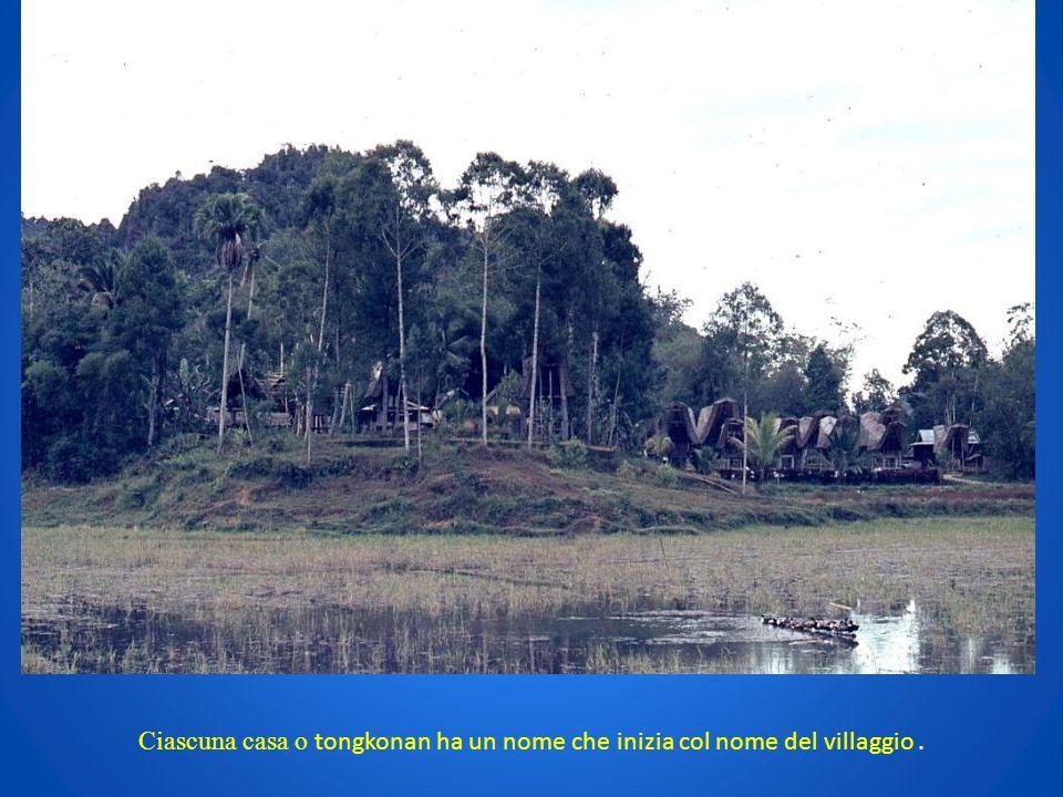 Ciascuna casa o tongkonan ha un nome che inizia col nome del villaggio.
