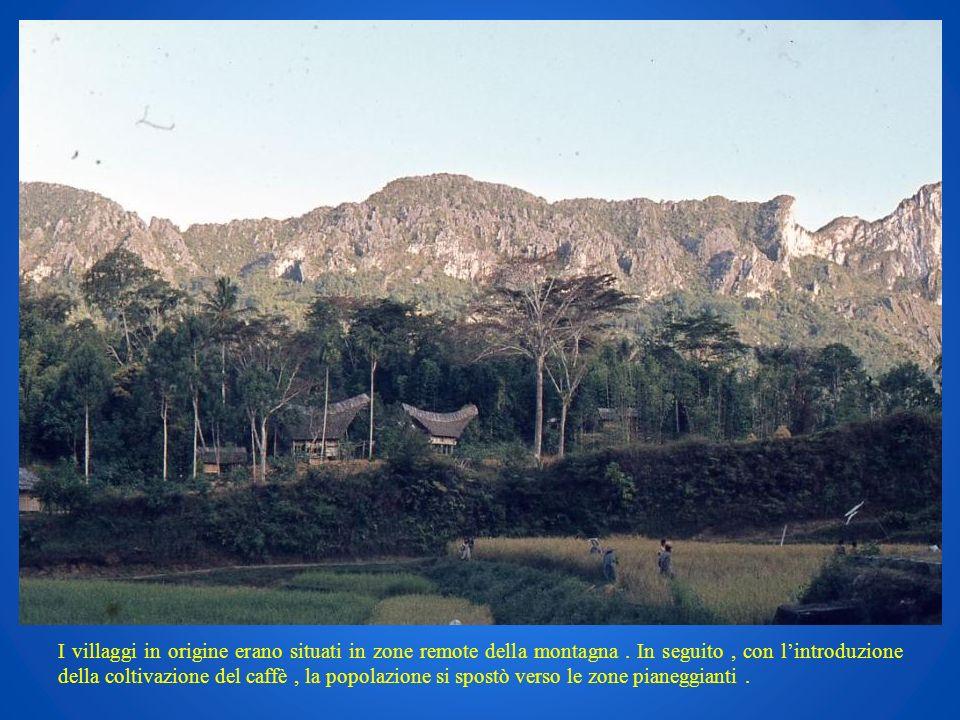 I villaggi in origine erano situati in zone remote della montagna. In seguito, con lintroduzione della coltivazione del caffè, la popolazione si spost