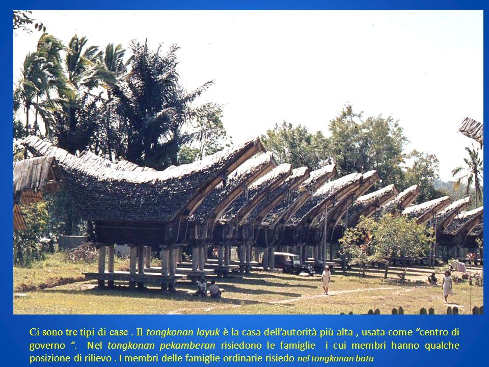 Ci sono tre tipi di case. Il tongkonan layuk è la casa dellautorità più alta, usata come centro di governo. Nel tongkonan pekamberan risiedono le fami