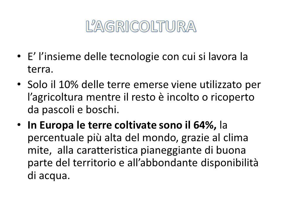 MODERNA E TECNOLOGICAMENTE AVANZATA (detta anche INTENSIVA) Fa largo uso di innovazioni scientifiche e tecnologiche (sementi selezionate e persino geneticamente modificate, nuovi macchinari che riducono al minimo limpiego delluomo, serre e impianti di irrigazione) per produrre enormi quantità di prodotti (quindi aumenta la produzione, ma diminuiscono gli agricoltori!!!) è tipica dei Paesi europei occidentali occupa un basso numero di addetti.
