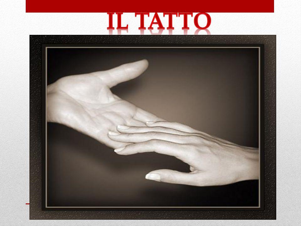 Il tatto può essere definito come il complesso di sensazioni causate da un contatto diretto fra la superficie del corpo e oggetti esterni, oppure fra due o più parti del corpo stesso.