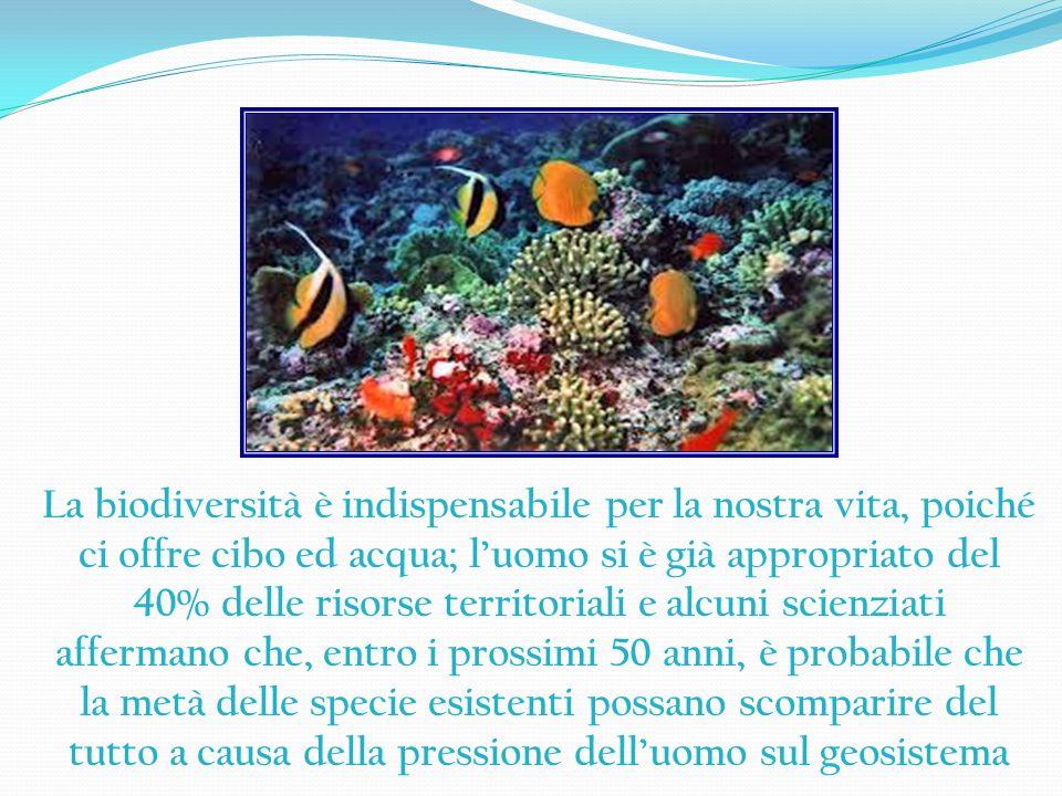 La biodiversità è indispensabile per la nostra vita, poiché ci offre cibo ed acqua; luomo si è già appropriato del 40% delle risorse territoriali e al