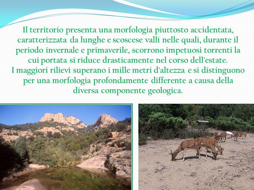 Il territorio presenta una morfologia piuttosto accidentata, caratterizzata da lunghe e scoscese valli nelle quali, durante il periodo invernale e pri