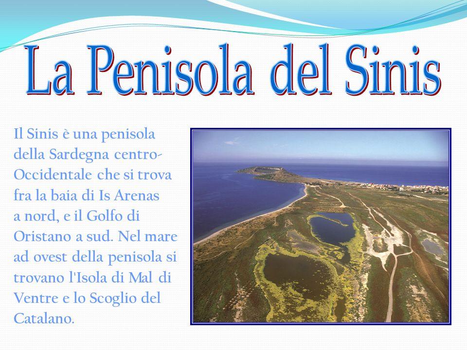 Il Sinis è una penisola della Sardegna centro- Occidentale che si trova fra la baia di Is Arenas a nord, e il Golfo di Oristano a sud. Nel mare ad ove