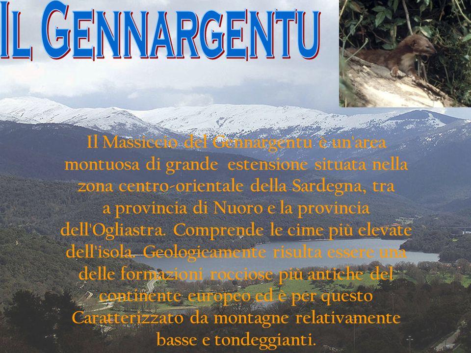 Il Massiccio del Gennargentu è un'area montuosa di grande estensione situata nella zona centro-orientale della Sardegna, tra a provincia di Nuoro e la