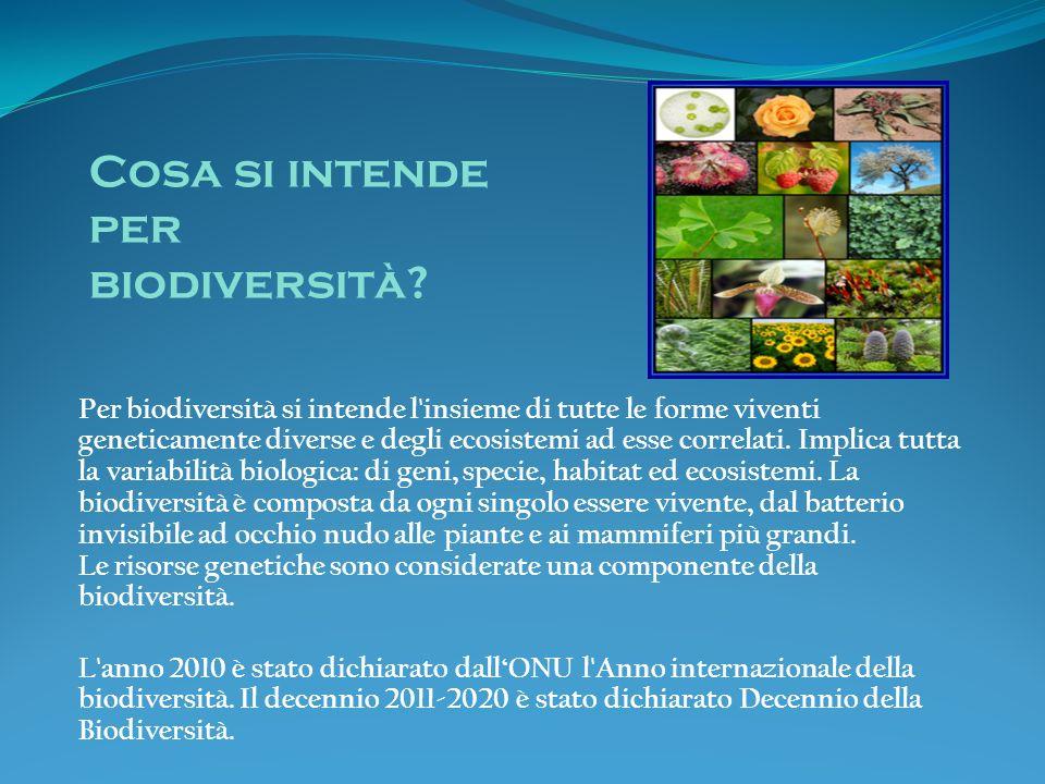 Per biodiversità si intende l'insieme di tutte le forme viventi geneticamente diverse e degli ecosistemi ad esse correlati. Implica tutta la variabili