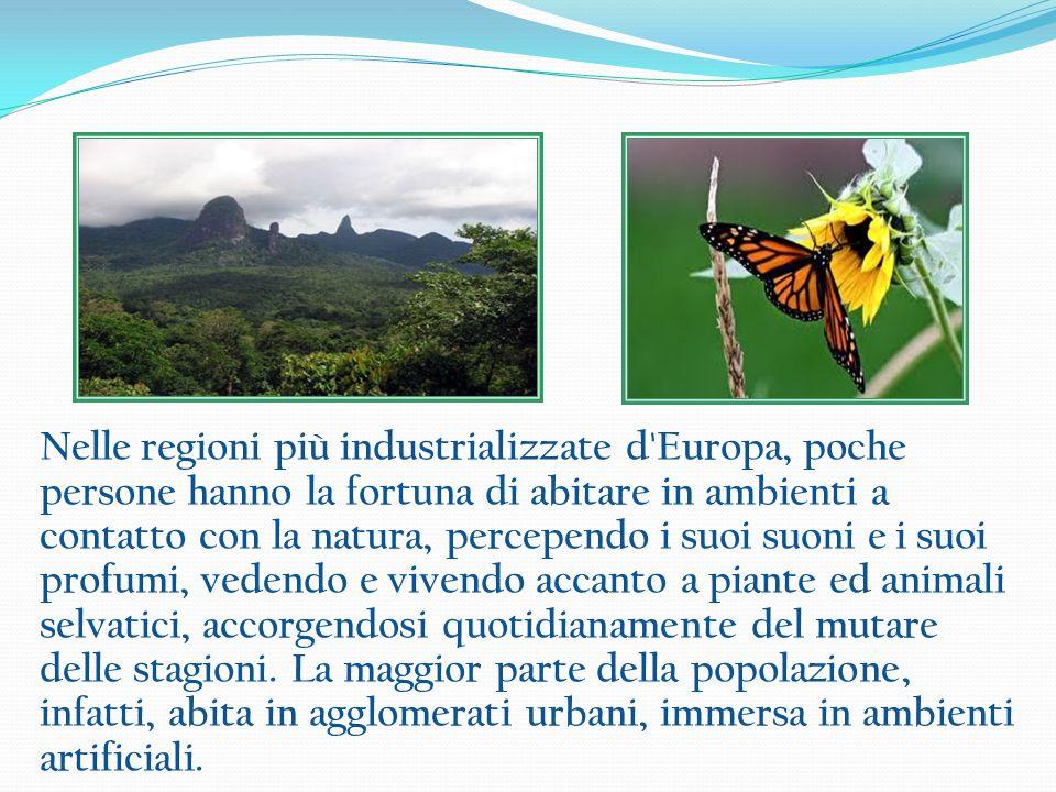 La biodiversità comprende una varietà molto elevata di animali, ecosistemi e piante legati luno allaltro, tutti sono indispensabili per la vita del pianeta.