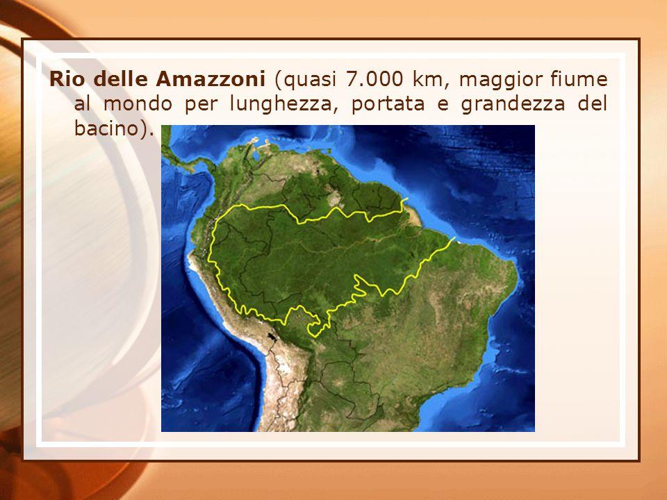 Rio delle Amazzoni (quasi 7.000 km, maggior fiume al mondo per lunghezza, portata e grandezza del bacino).