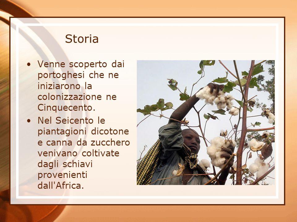 Storia Venne scoperto dai portoghesi che ne iniziarono la colonizzazione ne Cinquecento. Nel Seicento le piantagioni dicotone e canna da zucchero veni