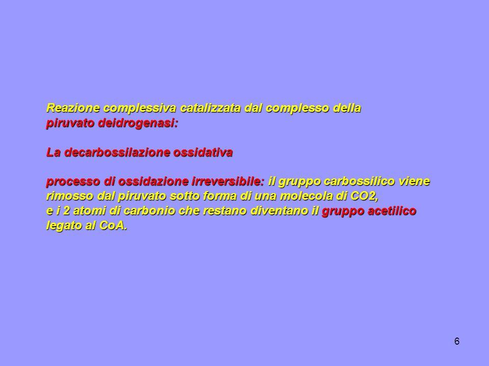6 Reazione complessiva catalizzata dal complesso della piruvato deidrogenasi: La decarbossilazione ossidativa processo di ossidazione irreversibile: i