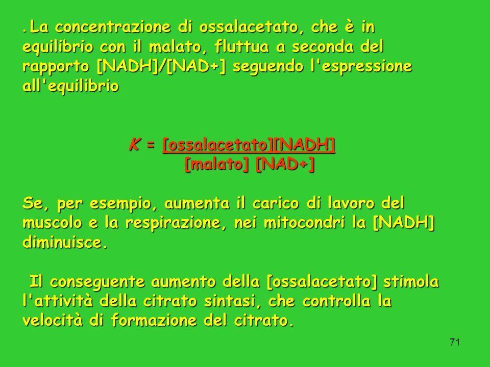 71. La concentrazione di ossalacetato, che è in equilibrio con il malato, fluttua a seconda del rapporto [NADH]/[NAD+] seguendo l'espressione all'equi
