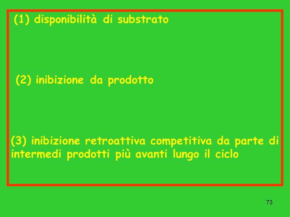 73 (1) disponibilità di substrato (2) inibizione da prodotto (3) inibizione retroattiva competitiva da parte di intermedi prodotti più avanti lungo il