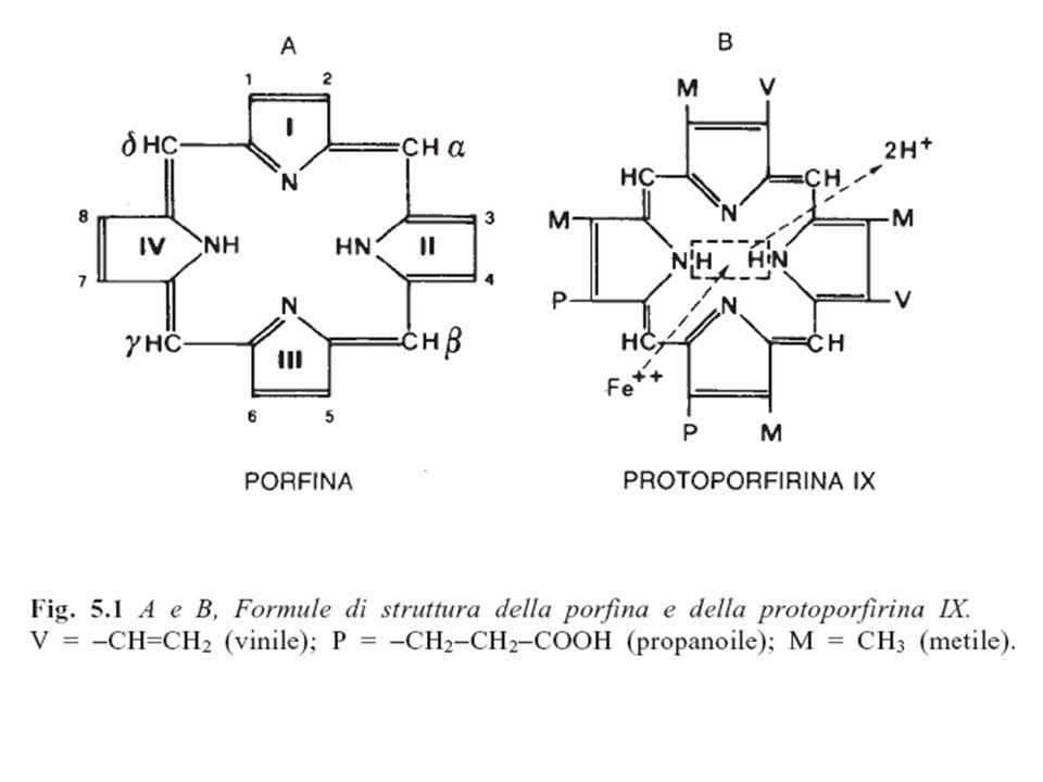 deossiemoglobina ossiemoglobina Y145 Forma T Forma R