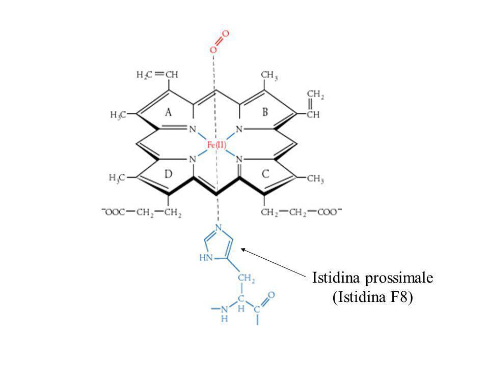 La chimica dei composti di coordinazione, è la branca della chimica che studia gli ioni complessi, cioè delle molecole in cui un catione metallico è coordinato (cioè legato con un particolare legame chimico) ad atomi, ioni o molecole con un numero di legami superiore il suo numero di ossidazione.