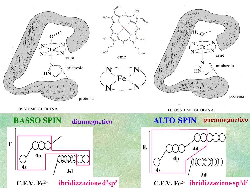 BASSO SPINALTO SPIN ibridizzazione d 2 sp 3 ibridizzazione sp 3 d 2 diamagnetico paramagnetico